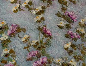 Garden Series Morning, Blooms
