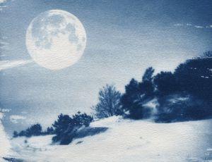 Moonlit Dune