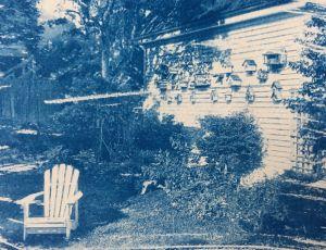 The Birdhouse Garden