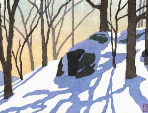 Snow Shadows, Blue Ridge