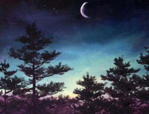 Five Pines & the Moon
