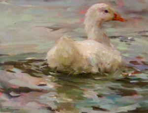 Graceful Swimmer
