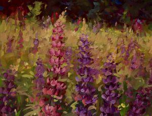 June Lupine by Sandra L. Dunn