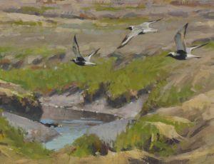 Salt Marsh Plovers by James Coe
