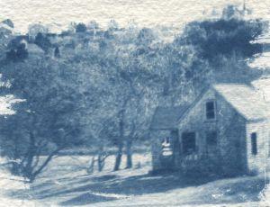 Perry's Farm