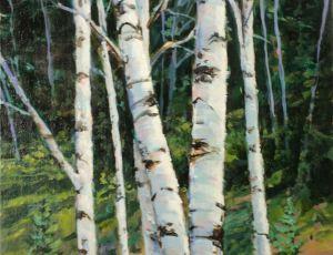 Strand of Birches by Sandy Crabtree