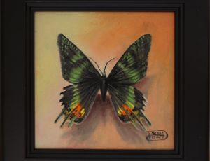Green Butterfly by Debra Keirce