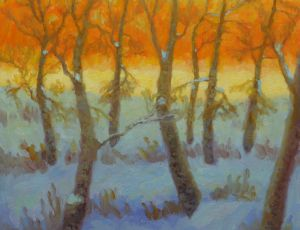 Winter Glade