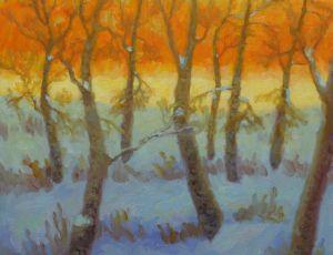 Winter Glade by Rob Longley