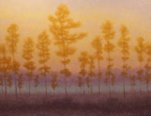 Everglade Dawn