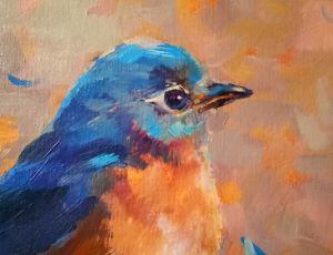 Bluebird Profile
